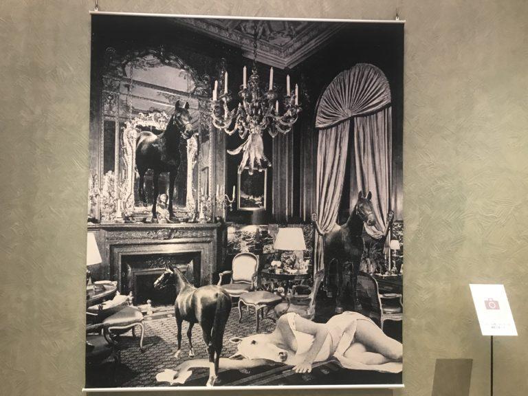 東京都庭園美術館『岡上淑子 フォトコラージュ 沈黙の奇蹟』展